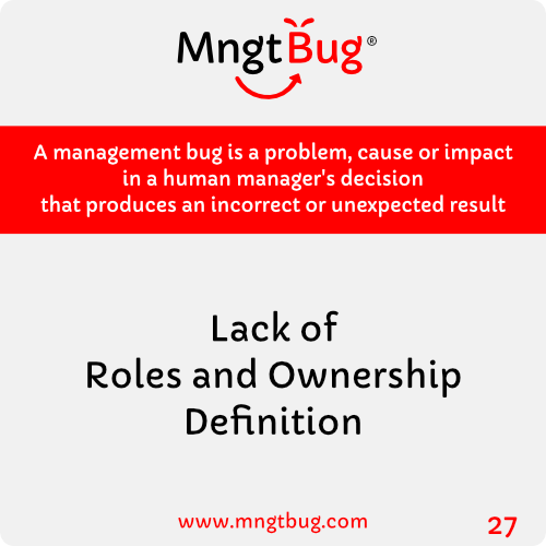 Management Bug 27 Lack of Roles and Ownership Definition