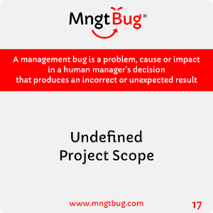 Management Bug 17 Undefined Project Scope