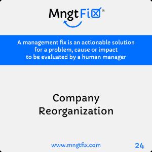 Management Fix 24 Company Reorganization
